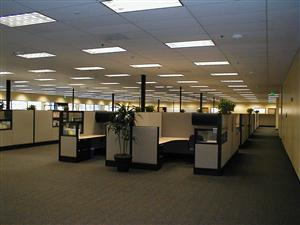 cubicles in an anonymous workplace