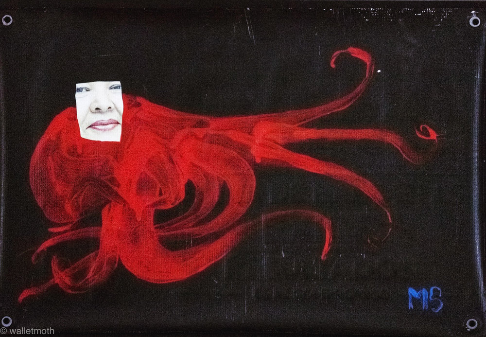 octopusrealestate.jpg
