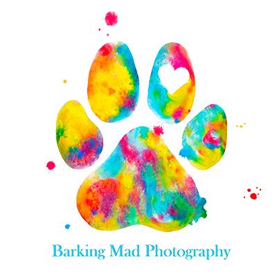 barking mad.jpg