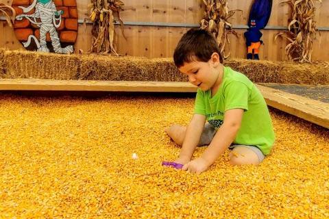 corn-bins-2_orig.png