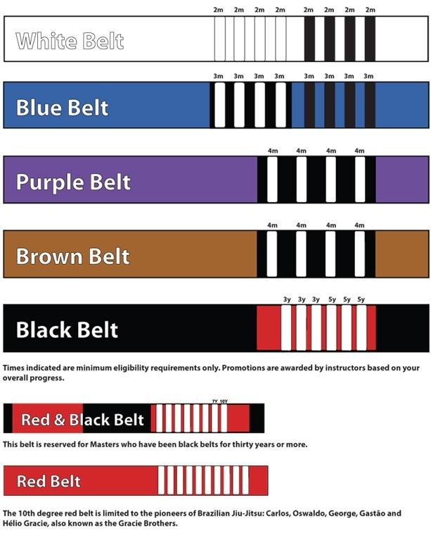 BJJ-belt-2.jpg