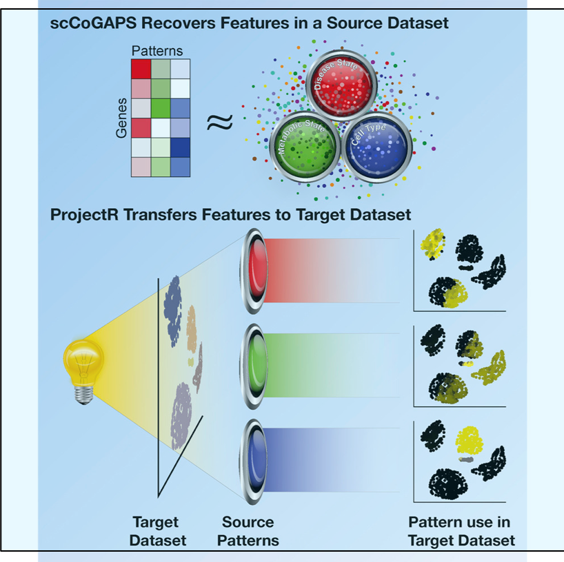 Categorizing Cells with Machine Learning and Latent Space — Genome