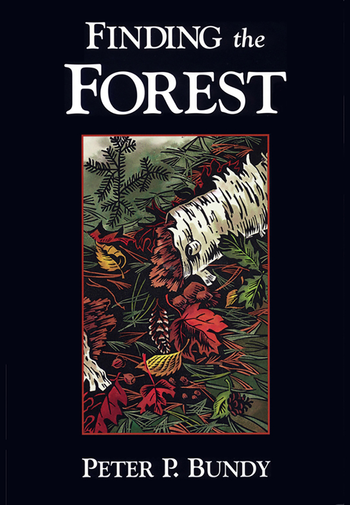 finding forest web.jpg