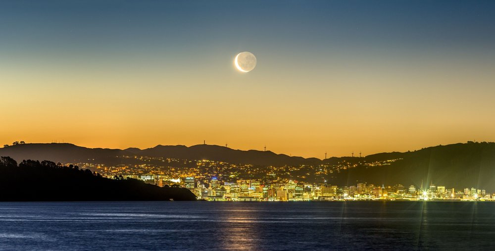 Wellington.jpeg