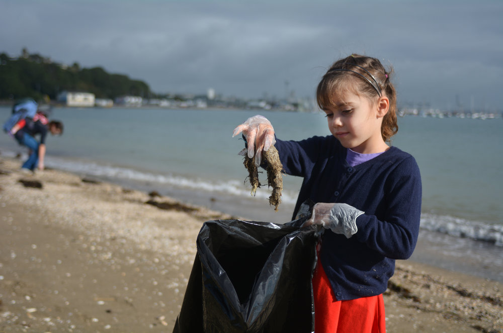 why-conserve-clean-the-beach-blue-planet