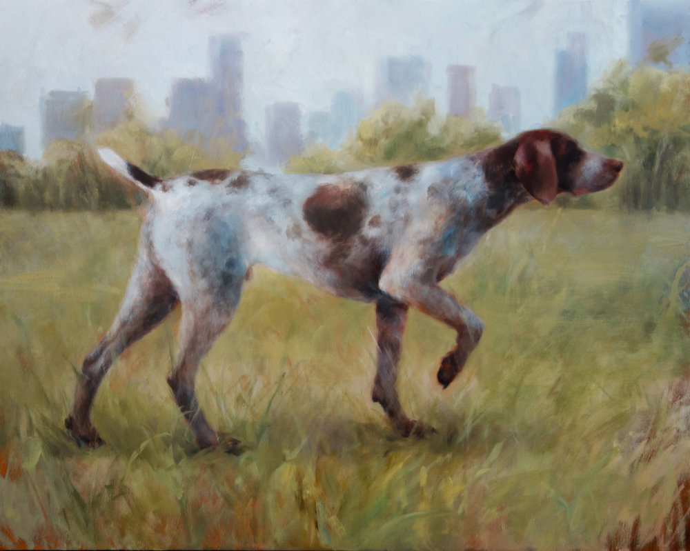"""SHEEP MEADOW  oil on canvas 24"""" x 30"""" 2016"""