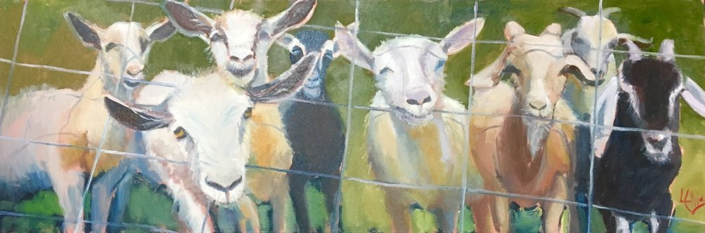 """""""Got Your Goats"""" 12"""" x 36"""" x 1 3/4"""" -oil on canvas museum wrap, $1,500 available at Dogwood Gallery"""