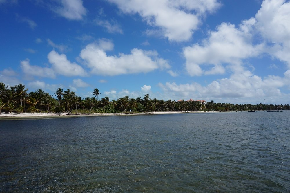 - LAND FOR SALE
