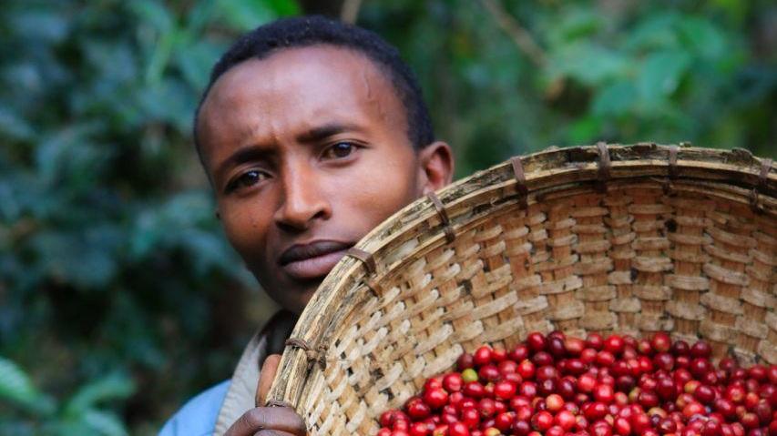 Ethiopia_Guji_Shakiso2.jpeg