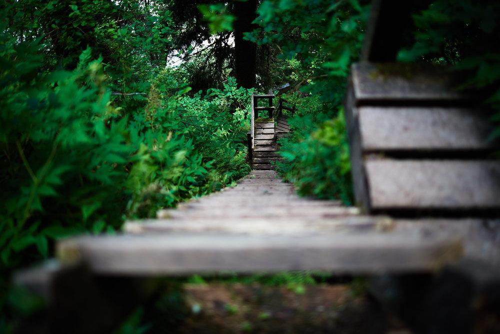 West-Coast-Trail-36.jpg