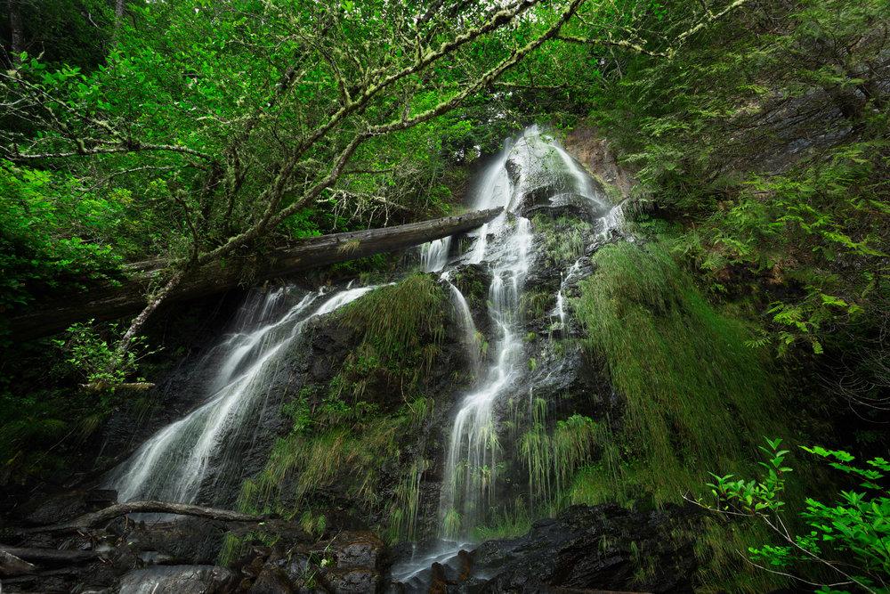 West-Coast-Trail-42.jpg