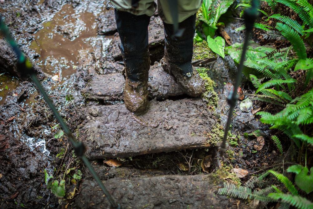 West-Coast-Trail-44.jpg