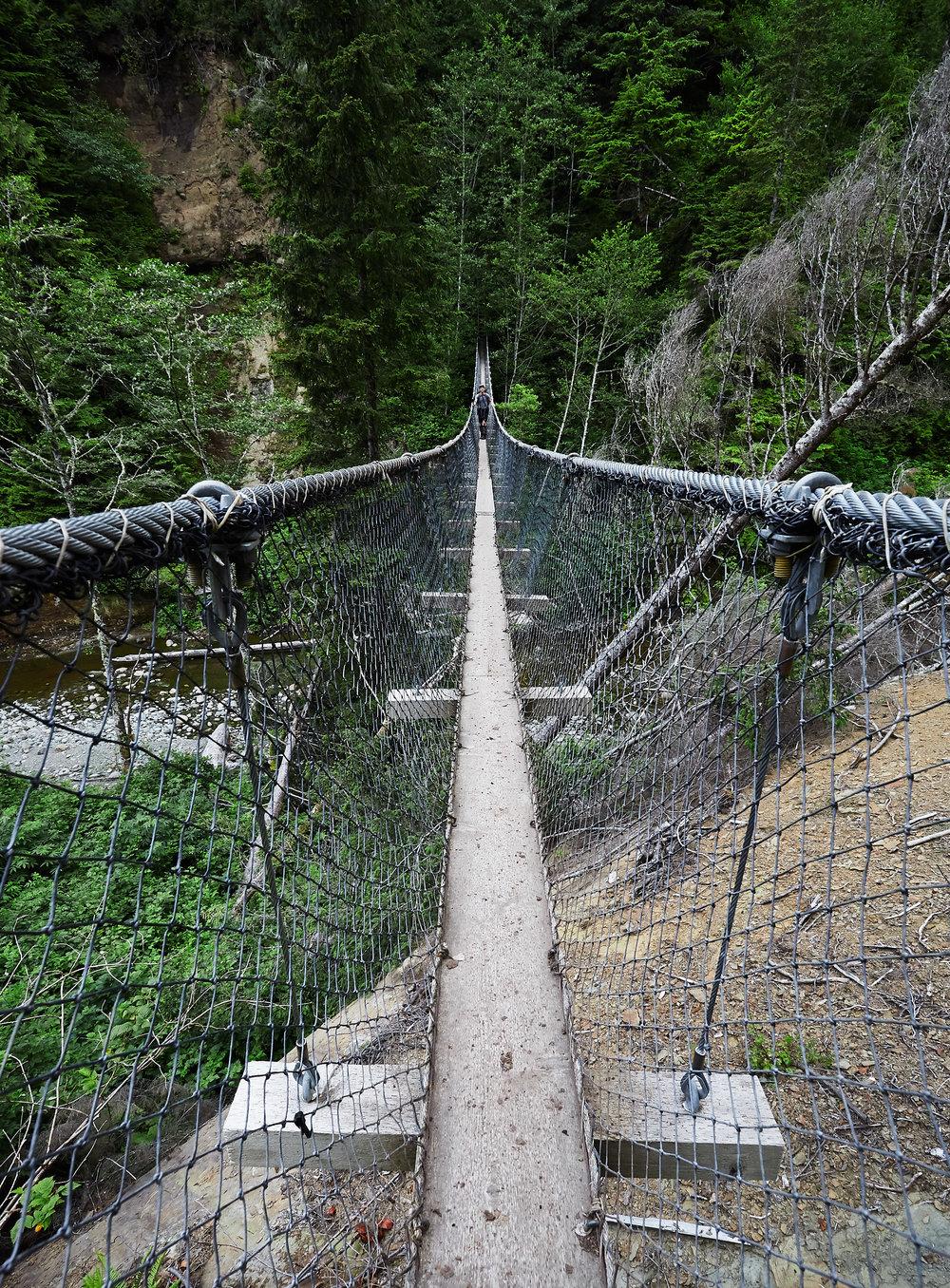 West-Coast-Trail-50.jpg