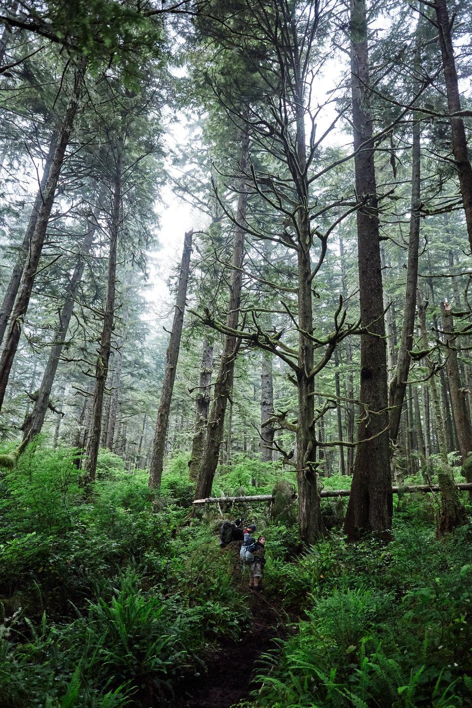 West-Coast-Trail-59.jpg