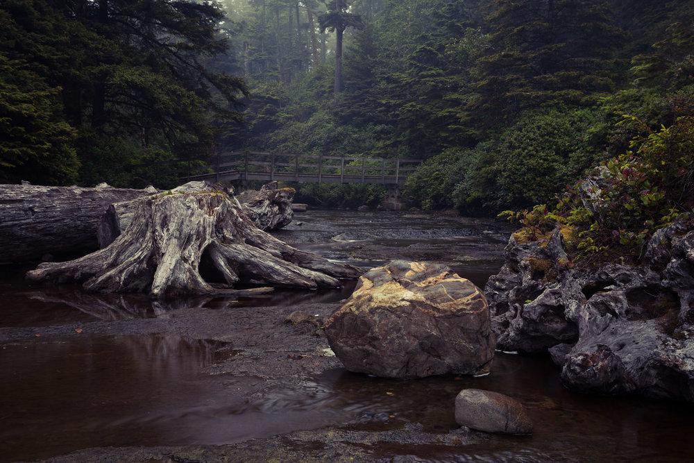 West-Coast-Trail-61.jpg