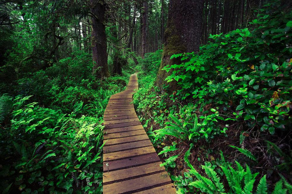 West-Coast-Trail-68.jpg