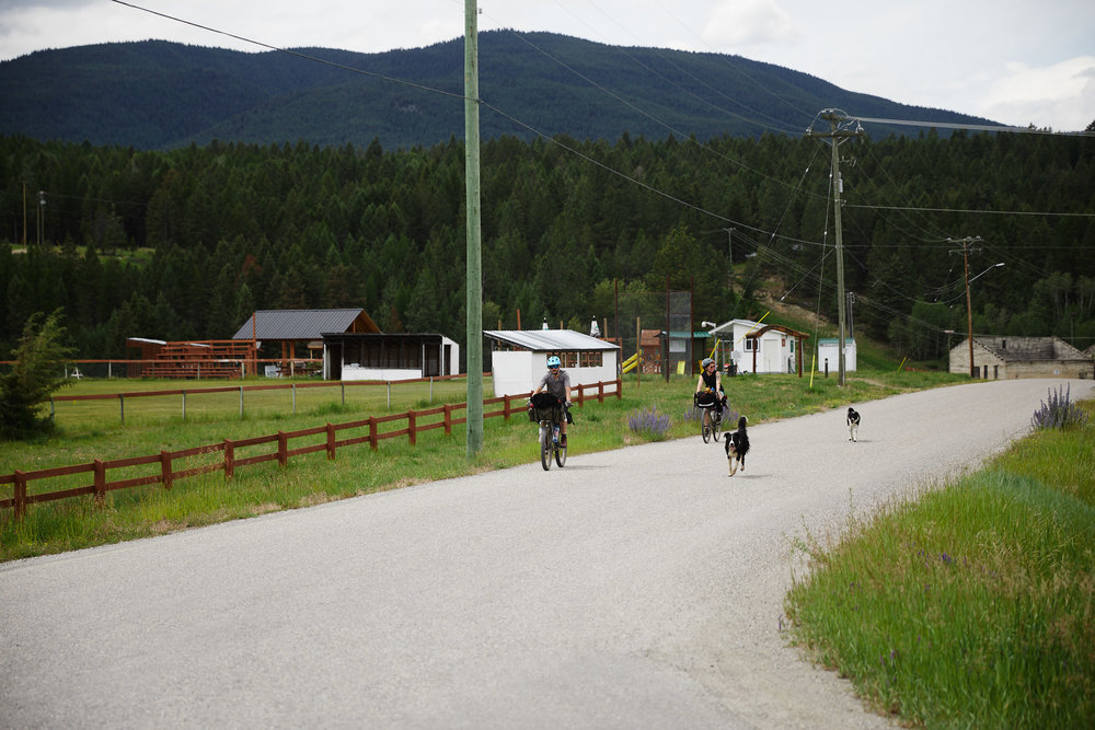 As we came into the small town of Wardner, two dogs followed us to a nearby park where we had lunch.