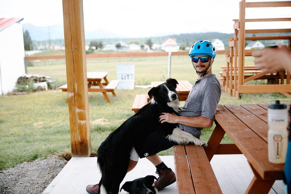 Jeff is the dog whisperer