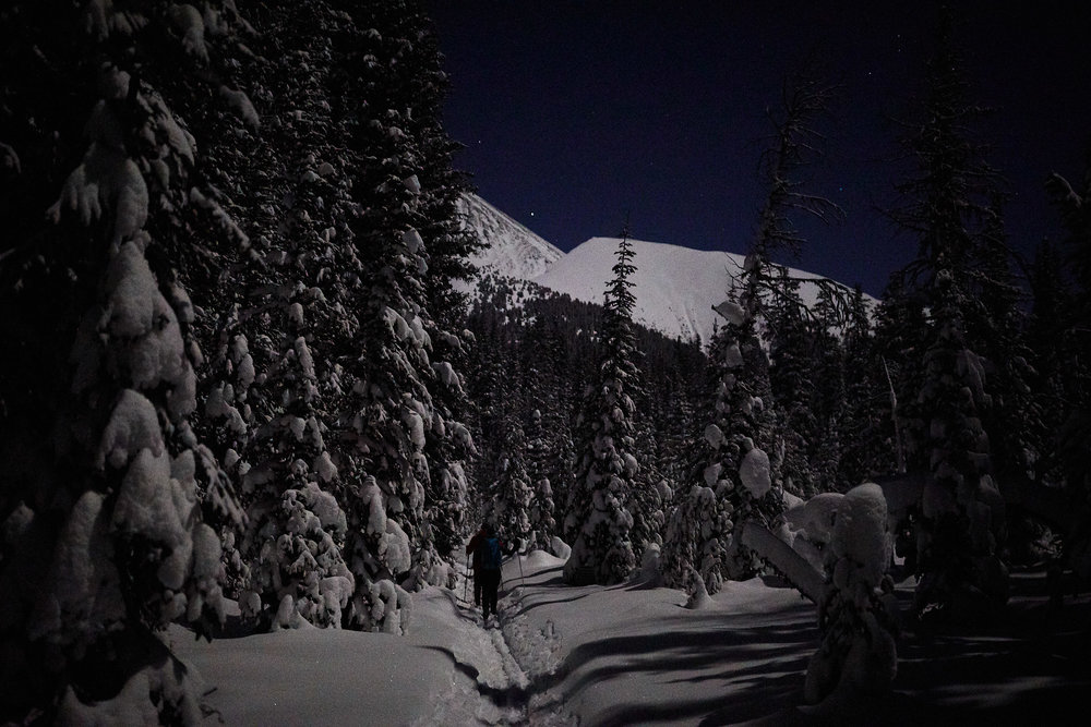 With the moon and fresh snow reflecting the light, no headlamps were needed.