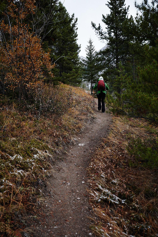 Grizzly Peak 3.jpg