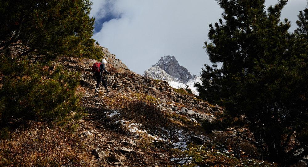 Grizzly Peak 5.jpg