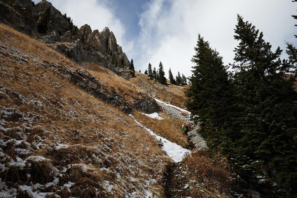 Grizzly Peak 10.jpg