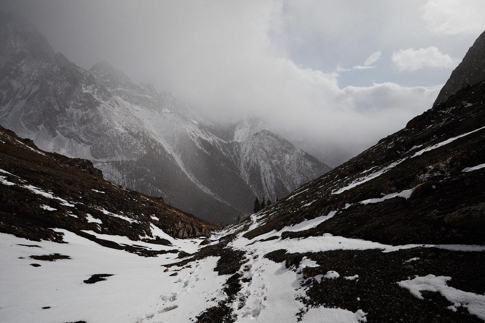 Grizzly Peak 12.jpg