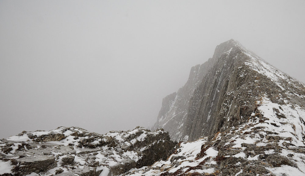 Grizzly Peak 17.jpg