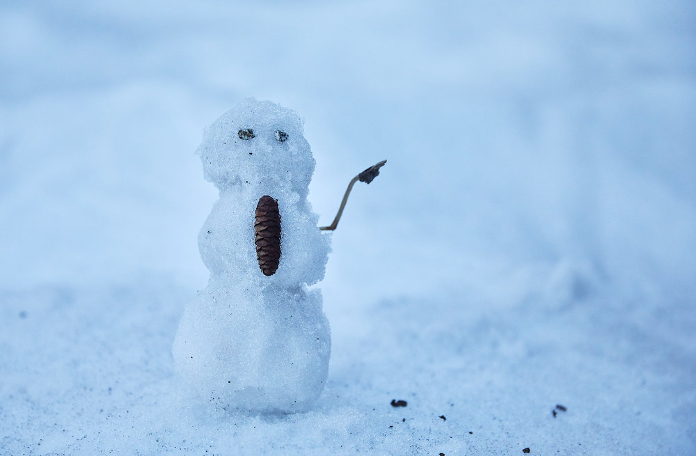 A small snowman Paige made to indicate the correct way.