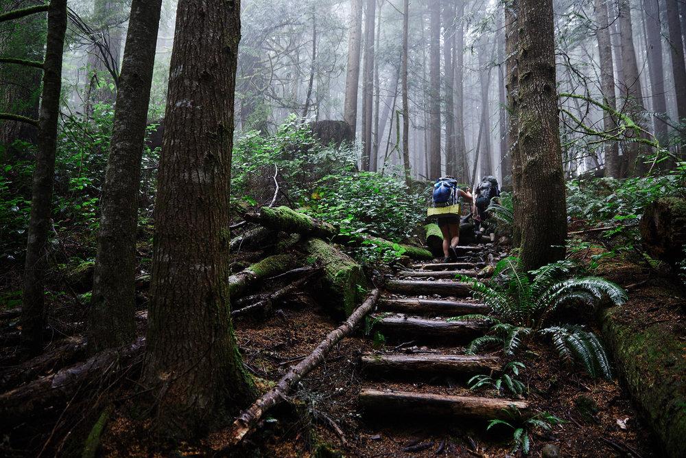 Juan de Fuca Trail 1.jpg