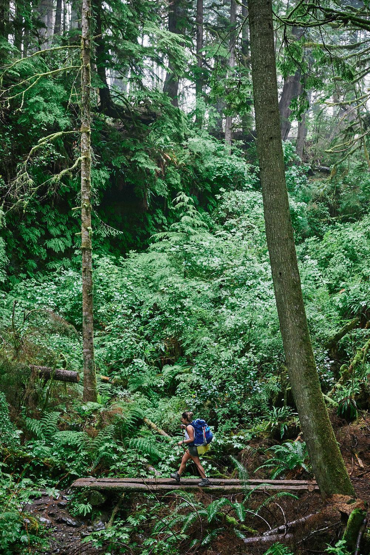 Juan de Fuca Trail 7.jpg