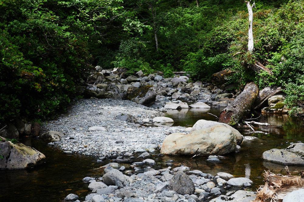 Juan de Fuca Trail 16.jpg