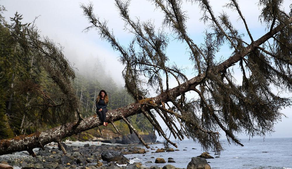 Juan de Fuca Trail 24.jpg