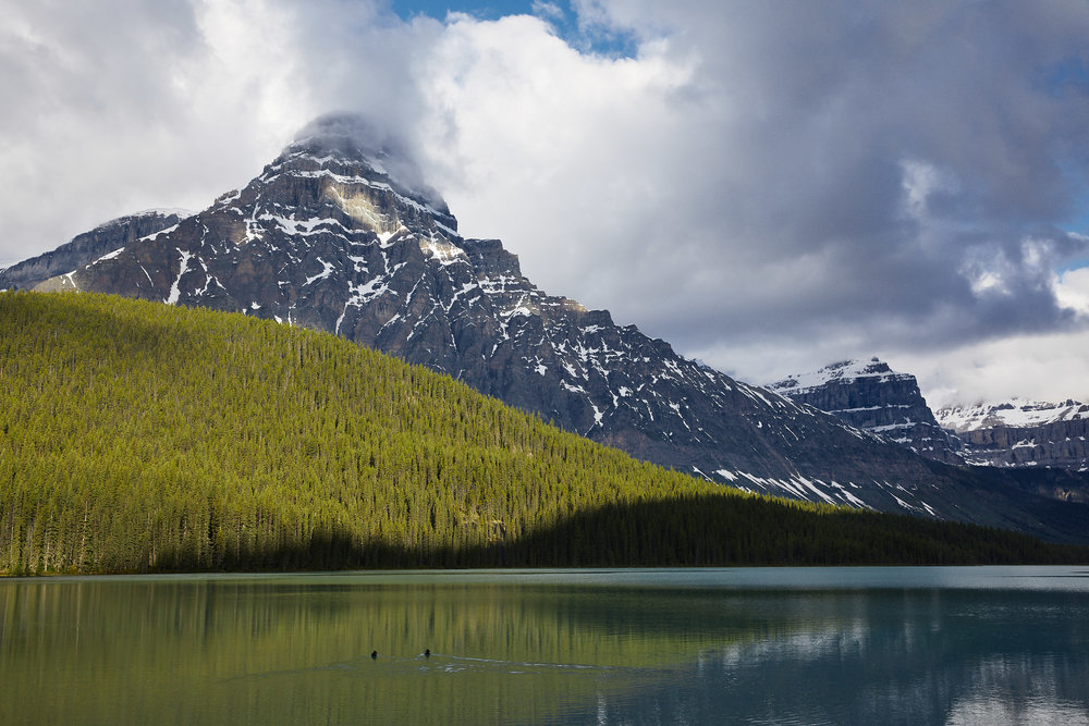 Icefields Parkway Cycle Tour - Lake Louise to Jasper 20.jpg