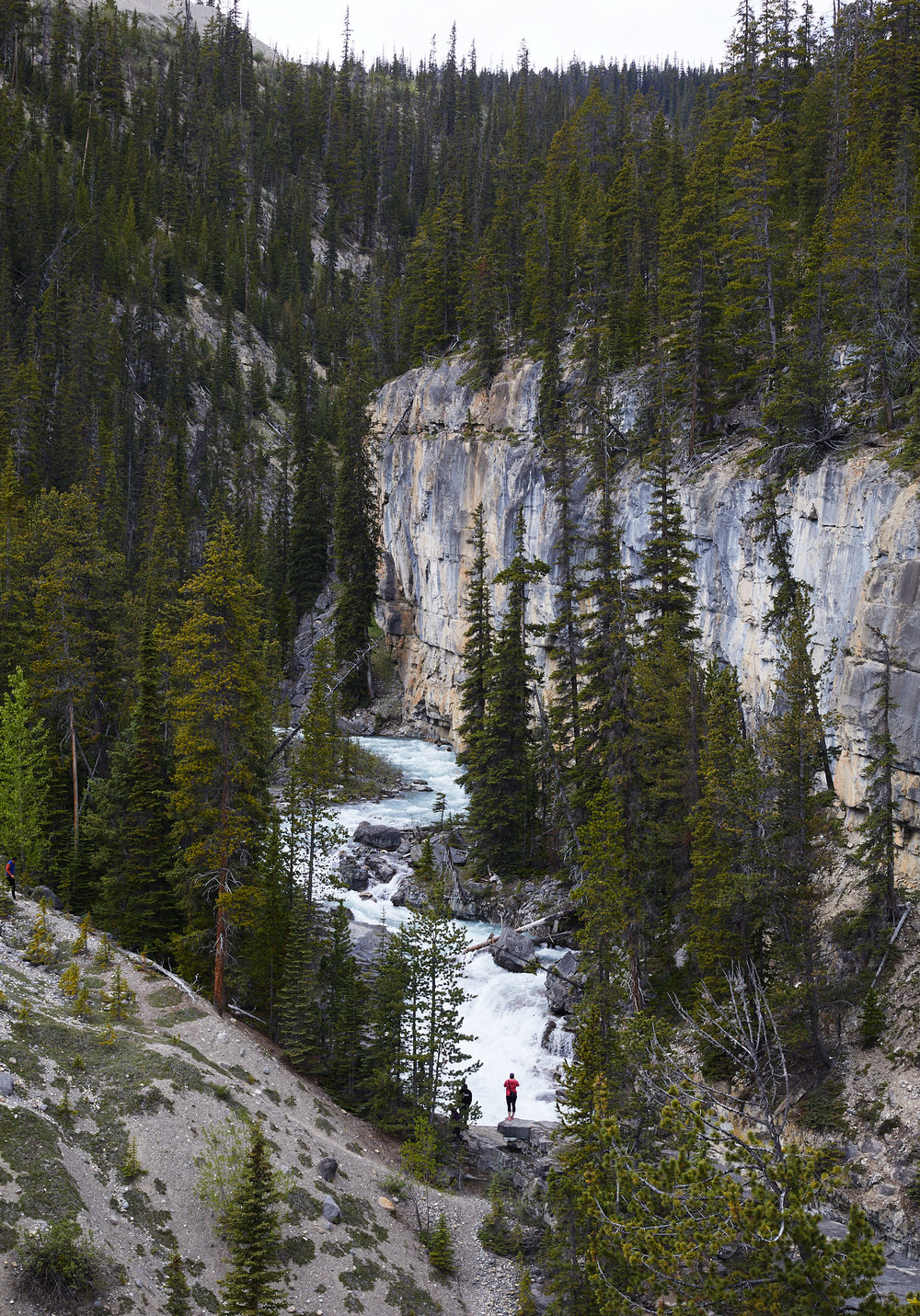 Icefields Parkway Cycle Tour - Lake Louise to Jasper 39.jpg