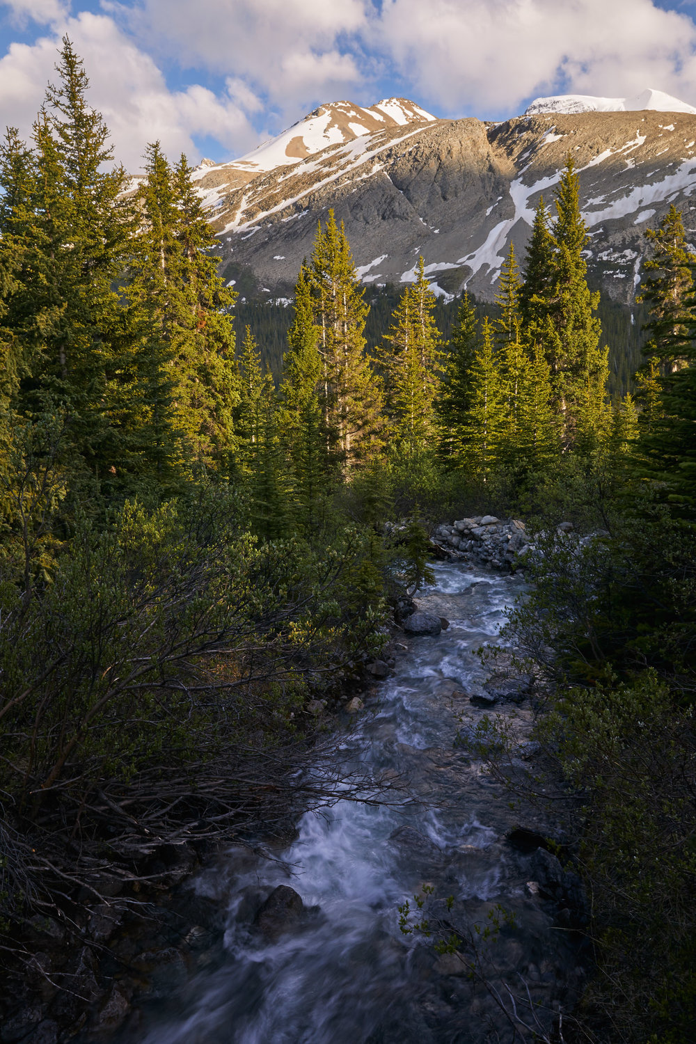 Icefields Parkway Cycle Tour - Lake Louise to Jasper 50.jpg