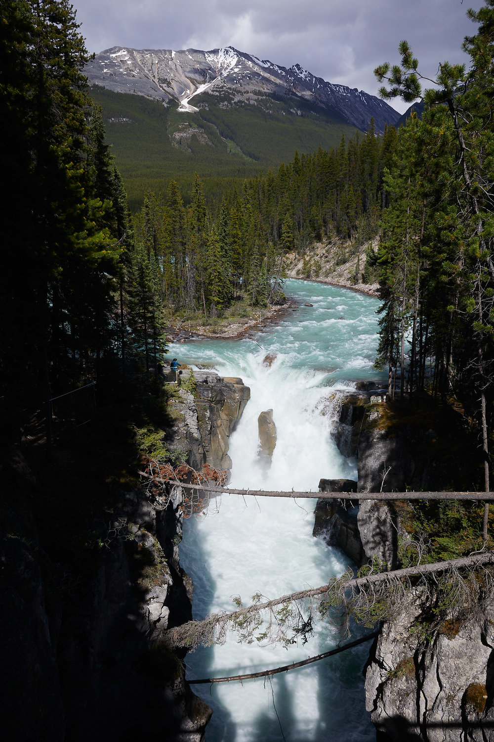 Icefields Parkway Cycle Tour - Lake Louise to Jasper 67.jpg