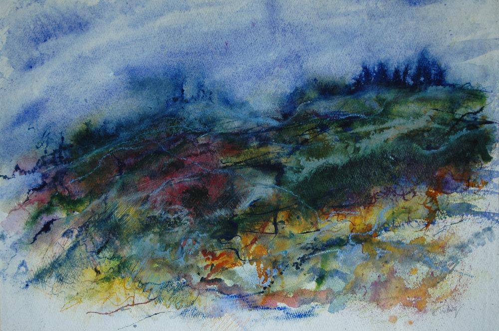 Tapestry of Landscape