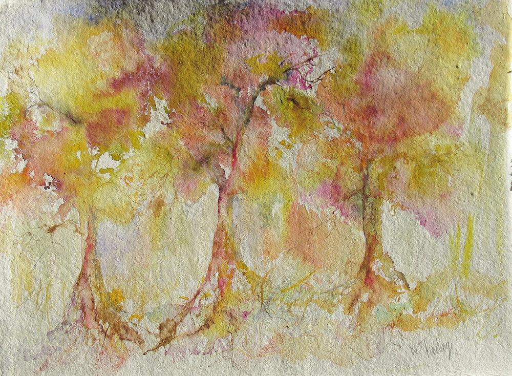 Whisper of Trees