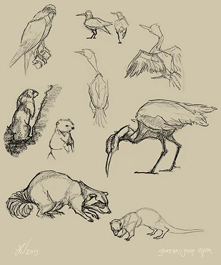 drawing02_web.jpg