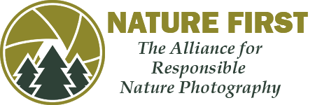 Filippo Macchi member of Nature First, The Alliance for Responsible Nature Photography