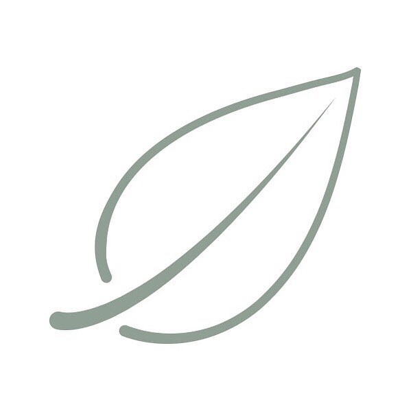 Elm leaf studio icon #leaf #graphicdesign #branding #minimaldesign