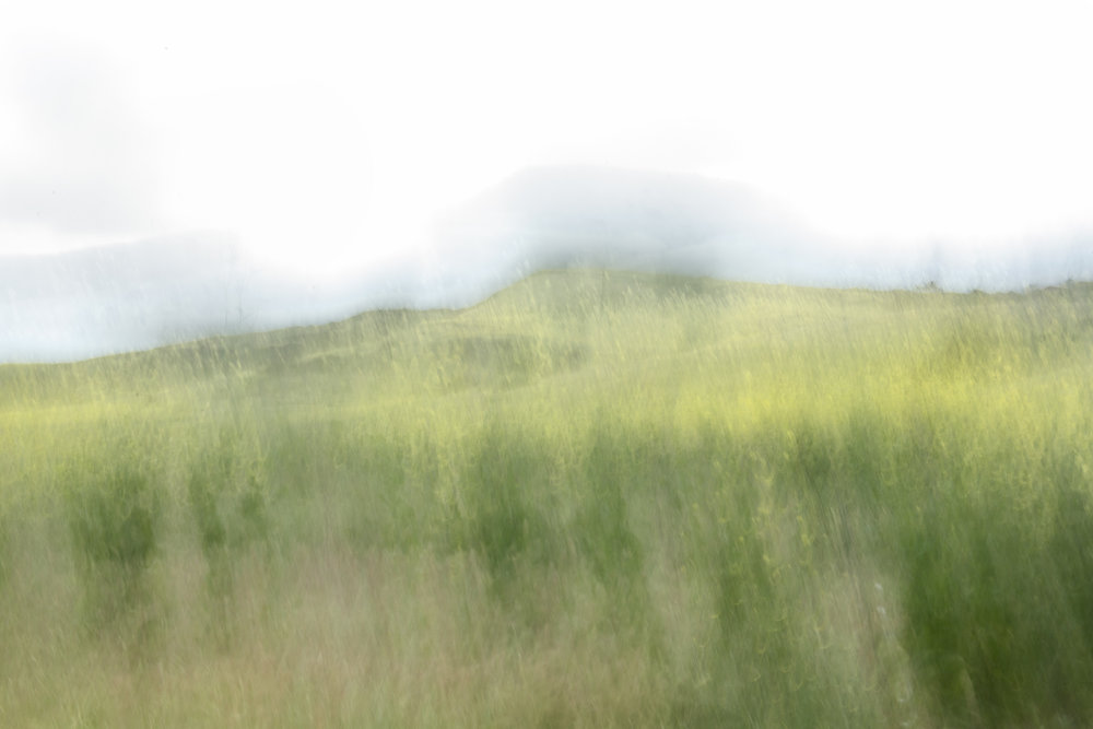 """""""Dream State"""", spring in the hills."""