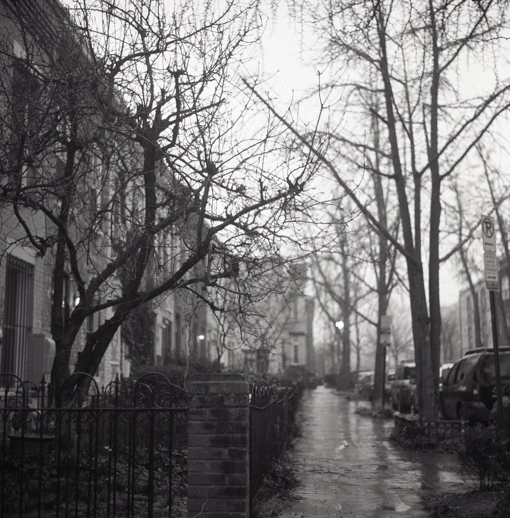 Rainy day in Shaw