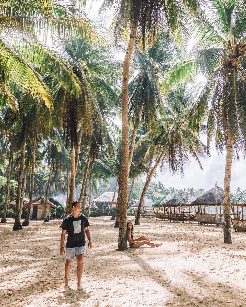 daku island palms