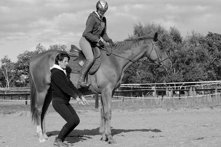 stage-equitation-alexander-5.jpg