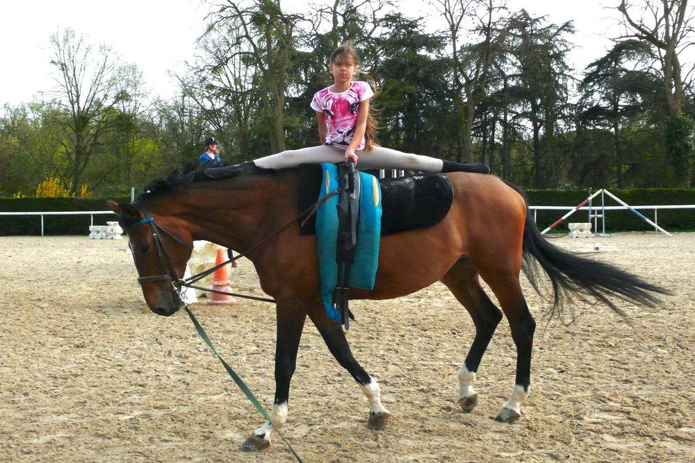 La Voltige - Cette discipline permet une approche originale du cheval. La Voltige, en cercle, met en scène un ou plusieurs voltigeurs qui évoluent sur un cheval au pas ou au galop tenu en longe. Le cheval est équipé d'un surfaix et d'un large tapis permettant aux voltigeurs d'effectuer une série de figures où l'équilibre et les aptitudes physiques sont pleinement mobilisés. Pauline Bazin et sa jument PHEDRE vous initient à cette discipline, qui allie grâce et équilibre et vous fait découvrir de nouvelles sensations équestres.
