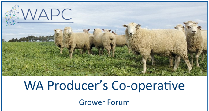 Grower Forum Gillamii 25p.PNG