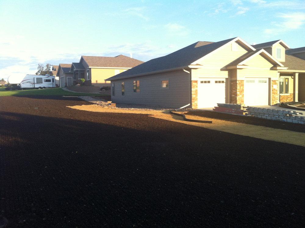 Seeded yard.JPG