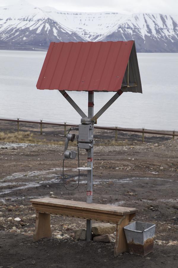 Arktisk telefon_naturfotograf_foredrag_grønland_island_svalbart_natur